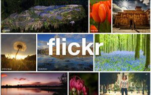 Free Flickr Photo Backup Tools