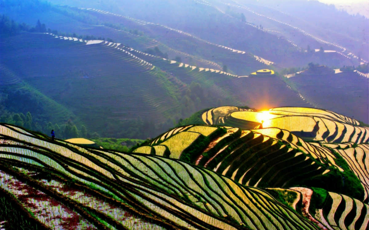 Rice-Terrace-Guilin-China